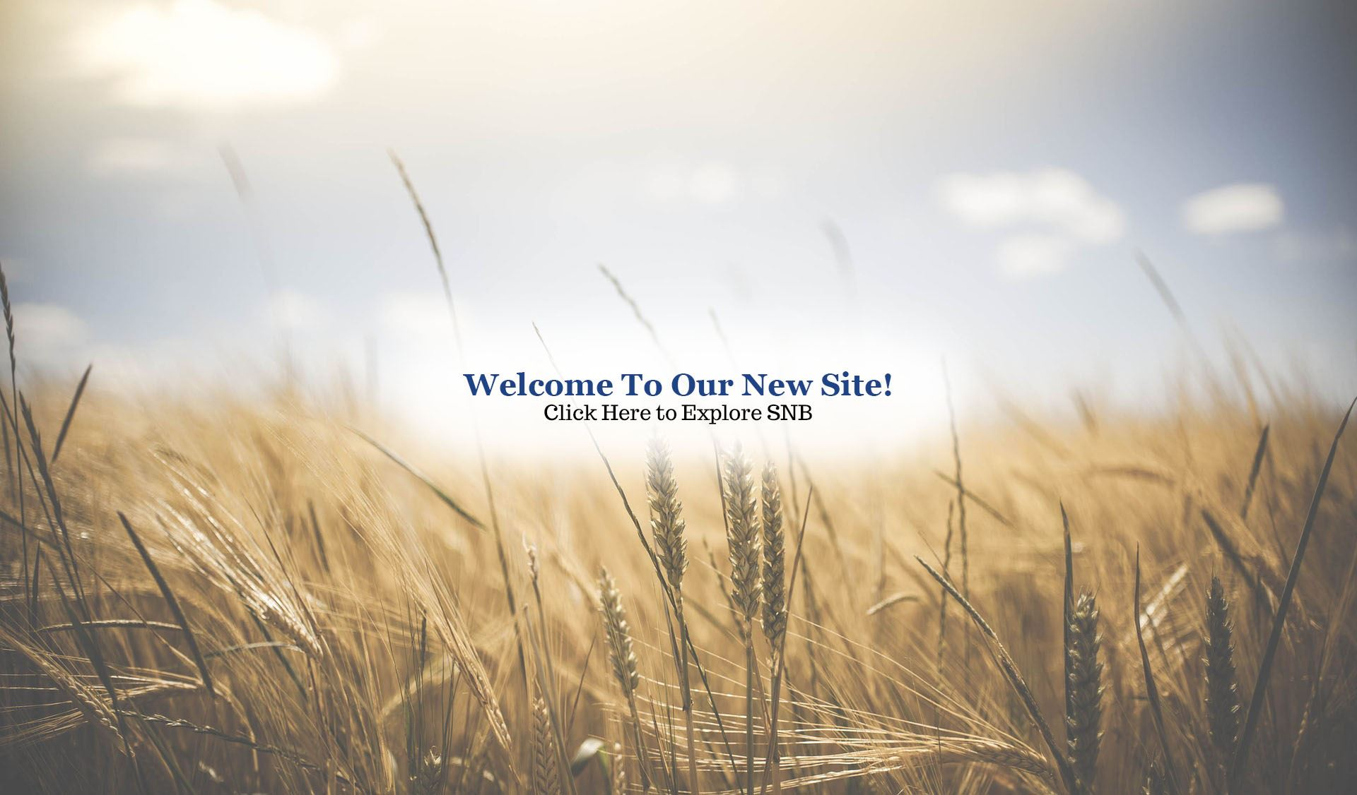 Welcome to our site main promo